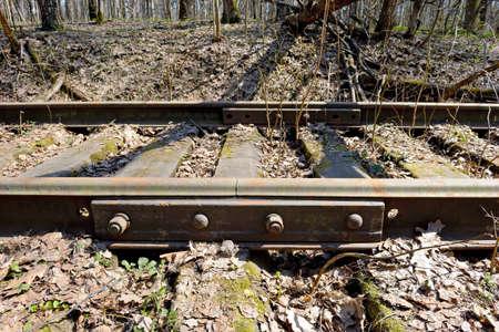 Roestige rails van de verlaten spoorlijn in het bos. Perspectief.