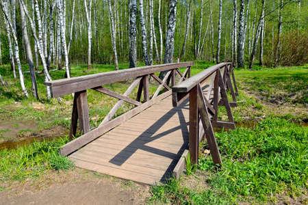 Wooden footbridge in the forest