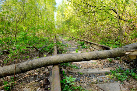 Abandoned railway with trees fallen down on rusty rails. Old railway track in the forest.