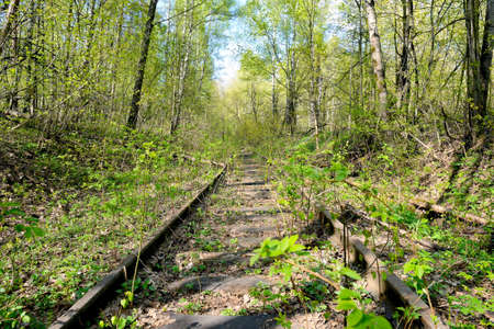 Old rusty rails of an abandoned railway. View into the distance. Reklamní fotografie