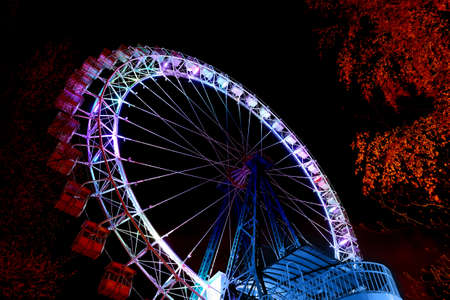 Ferris wheel with color lighting and trees against a night blue sky Standard-Bild