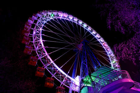 Part of ferris wheel with purple lighting and trees against a night dark sky