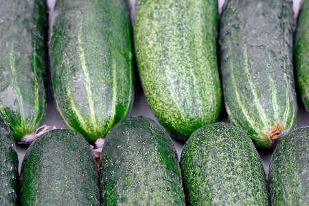 Crop of green cucumbers. Stok Fotoğraf