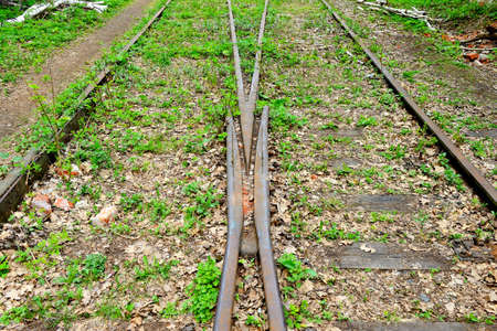 Arrow of an old abandoned railway passing in the forest. Split railway track. View in perspective.