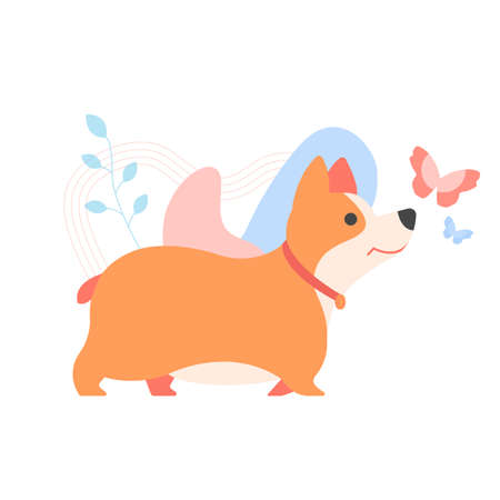 Cute welsh corgi puppy. Pet, family pet. A bright red fluffy character surrounded by pastel spots, plants and butterflies. Vector illustration on white background.
