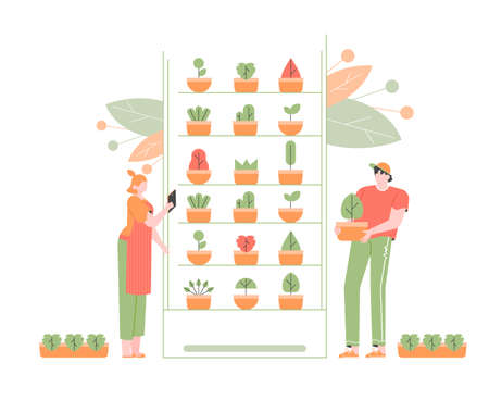 Vertical indoor farming. Growing crops in vertically stacked layers. Plant growth, soilless farming techniques. Hydroponics and aeroponics. Farmers characters work with potted plants. Vector flat.