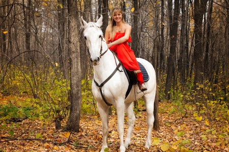 fine young woman in long red dress on horseback on white horse photo