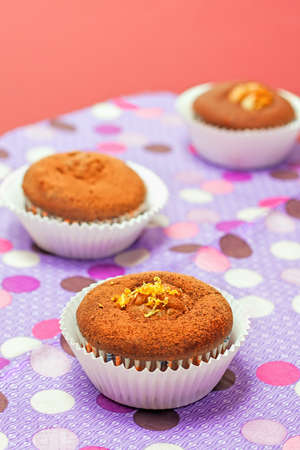 chocolate cupcakes with on color background