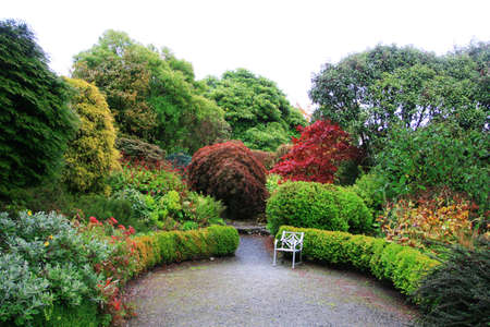 Beautiful garden with trees changing color in autumn focus on chair Stock Photo