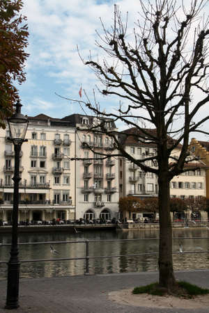 Tree without leaves in Lucerne with Lake Lucerne and bulidings in the background