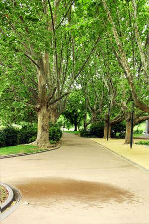 Melbourne Pathway outside Royal Botanic Gardens Stock Photo