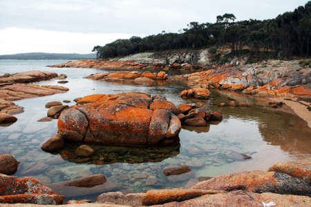 tasmania: Rocks covered with lichen at Coles Bay, Tasmania, Australia