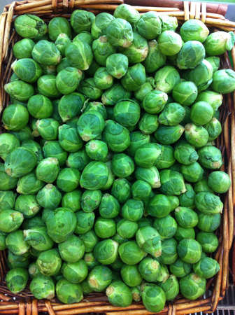 fresh basket of Brussels sprout  Stock Photo