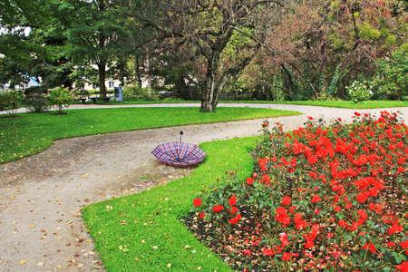 Abandoned umbrella in a park