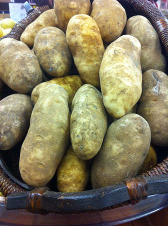 russet: Basket of fresh russet potatoes