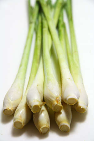 Stalks of lemongrass on white background with perspective Stock Photo