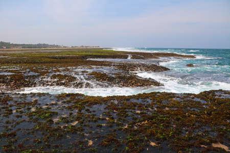 Receding waves back to ocean