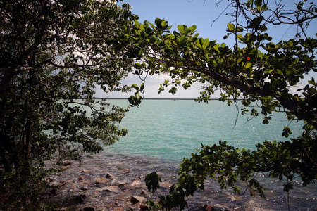 Langkawi - View of sea through trees by the roadside of the airport Stock Photo