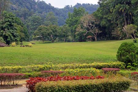 Penang Botanical Gardens, Penang, Malaysia