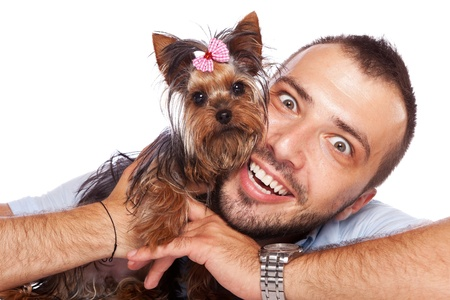 cute yorkshire terrier puppy dog in the arms of a young man looking at the camera photo