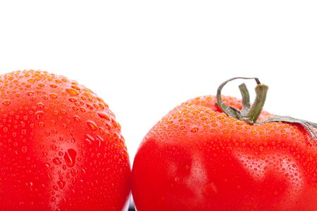 macro of two red fresh tomatoes on white background photo
