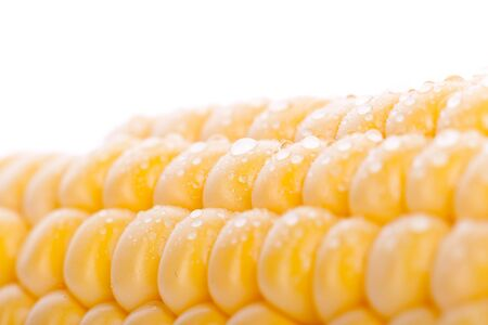 macro picture of a piece of yellow corn photo