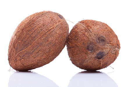 two coconuts leaning on eachother on white background Stock Photo - 15736725