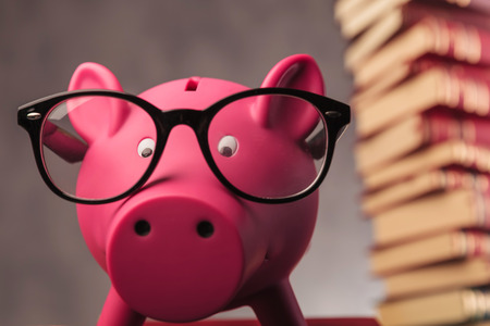 intelligent: piggy bank weaking glasses and faces the camera - closeup picture near pile of books