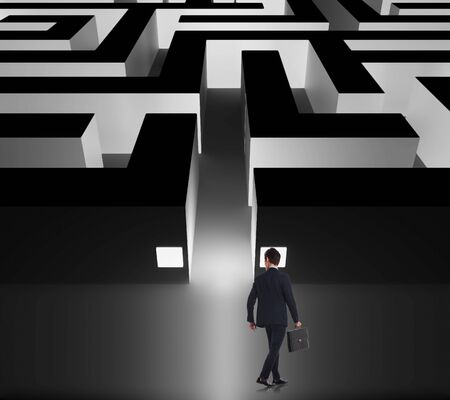 whether: walking businessman deciding whether to enter the business maze, back view, holding a briefcase
