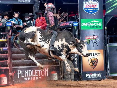 Bull with all four legs off the ground during a PBR event in Glendale, AZ Editorial
