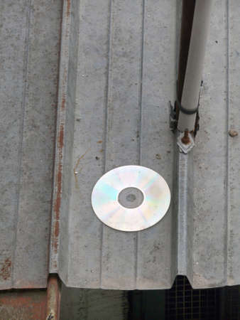 Discarded damaged Compact disc photo