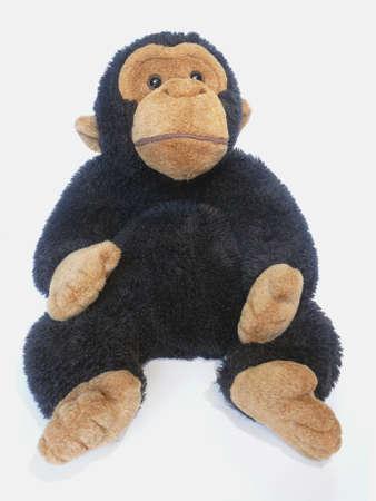 Funny stuffed monkey posing