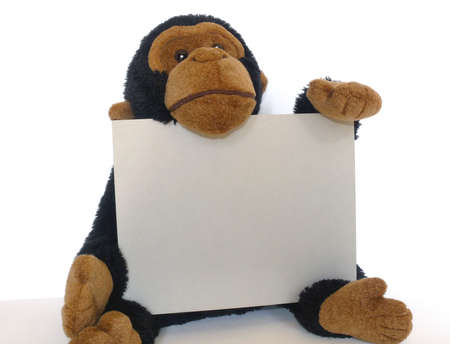 Funny toy monkey with a sign over white in horizontal