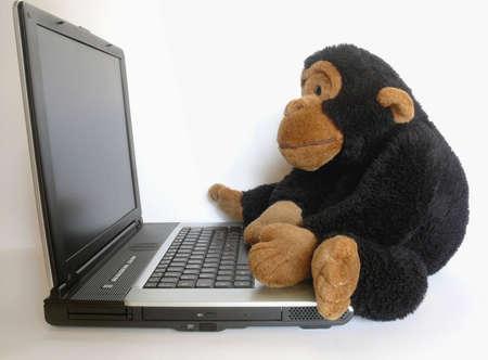 humoristic: Primer plano de un mono de peluche sentado en un ordenador port�til Foto de archivo