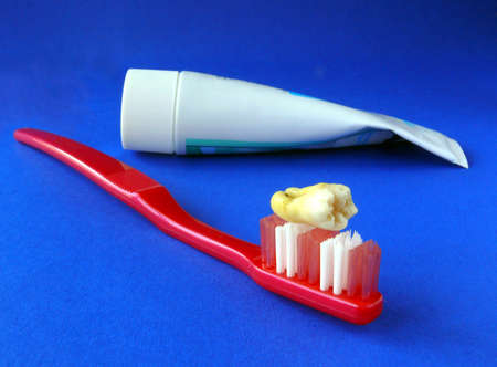 Real human molar on a toothbrush with toothpaste over blue Stock Photo - 4391301