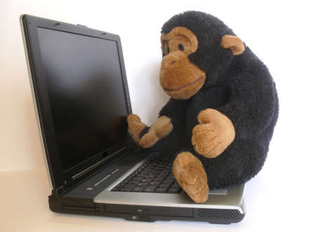 Lovable monkey sitting on a computer Stock Photo
