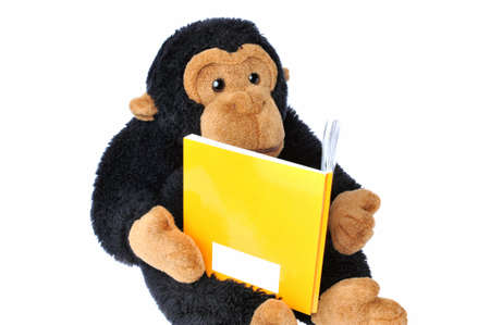 Close-up of a  stuffed monkey reading a book photo