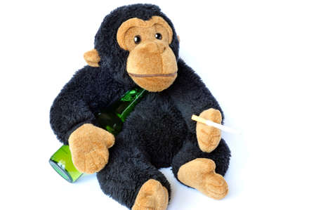 Abstract: fluffy monkey with beer and cigarette on white photo