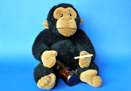 Funny scene: fluffy monkey with beer and cigarette on blue