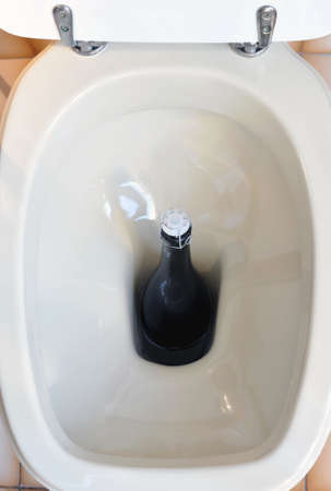 A toilet viewed from above with a bottle inside photo