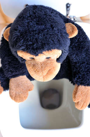 Abstract: a monkey toy sitting on the toilet photo