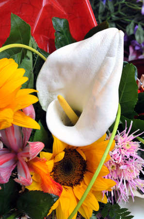 Detail of a Calla lily as part of a bouquet photo