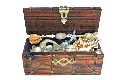 trinkets: Treasure chest with shells and marine trinkets