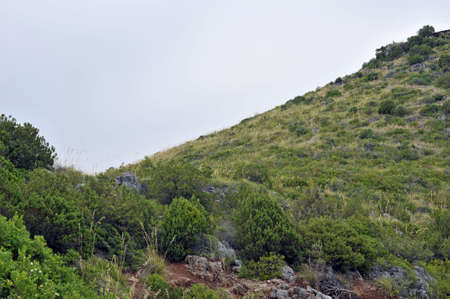 Steep hillside to the top view Stock Photo - 5562357