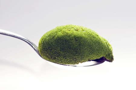 nourishment: Abstract photo for a green natural nourishment