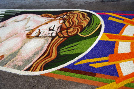 Spello, Umbria, Italy - May 2010: Drawing made by fresh petals, for the floral decorations contest called �Infiorata of Spello�. Annual event held in the street on the Sunday after Corpus Domini in Spello, Italy Stock Photo - 7193410