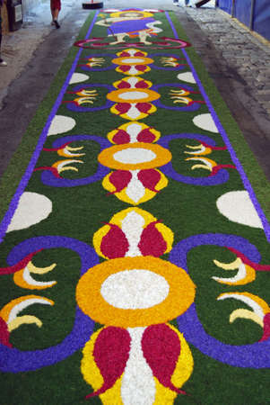 spello: Spello, Umbria, Italy - May 2010: Carpet made by fresh petals on the pavement for the floral decorations contest called �Infiorata of Spello�. Annual liturgical event held in the street on the Sunday after Corpus Domini in Spello, Italy Editorial