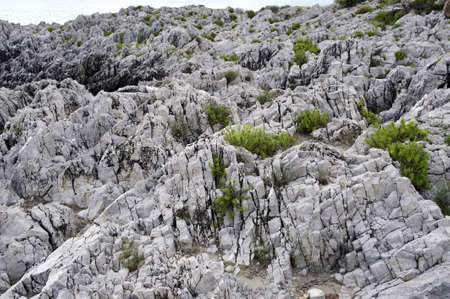 Detail of jagged rock along the coastline, south Italy Stock Photo - 7762029