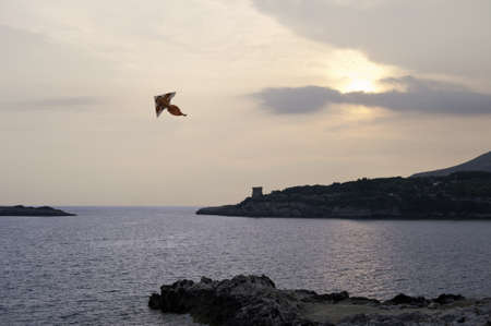 Sunset over the inlet with kite soaring, Cilento, Italy photo