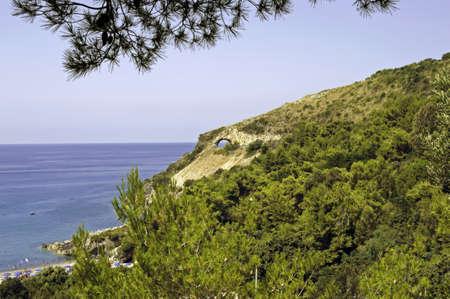lussureggiante: Costa rigogliosa con tunnel e spiaggia sotto